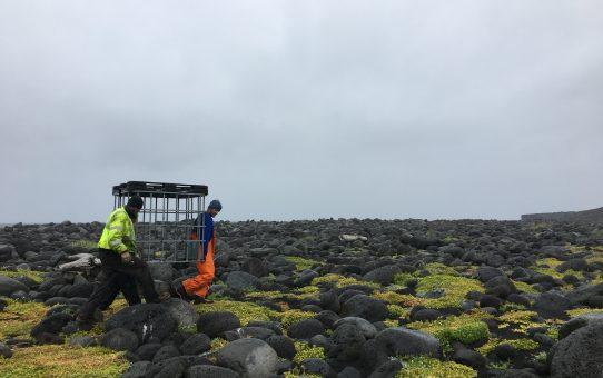 Fixing the Seawater Pump